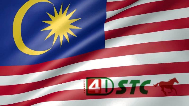 STC 4D